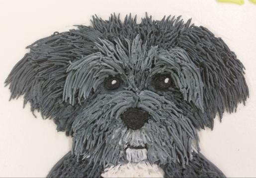 black gray dog